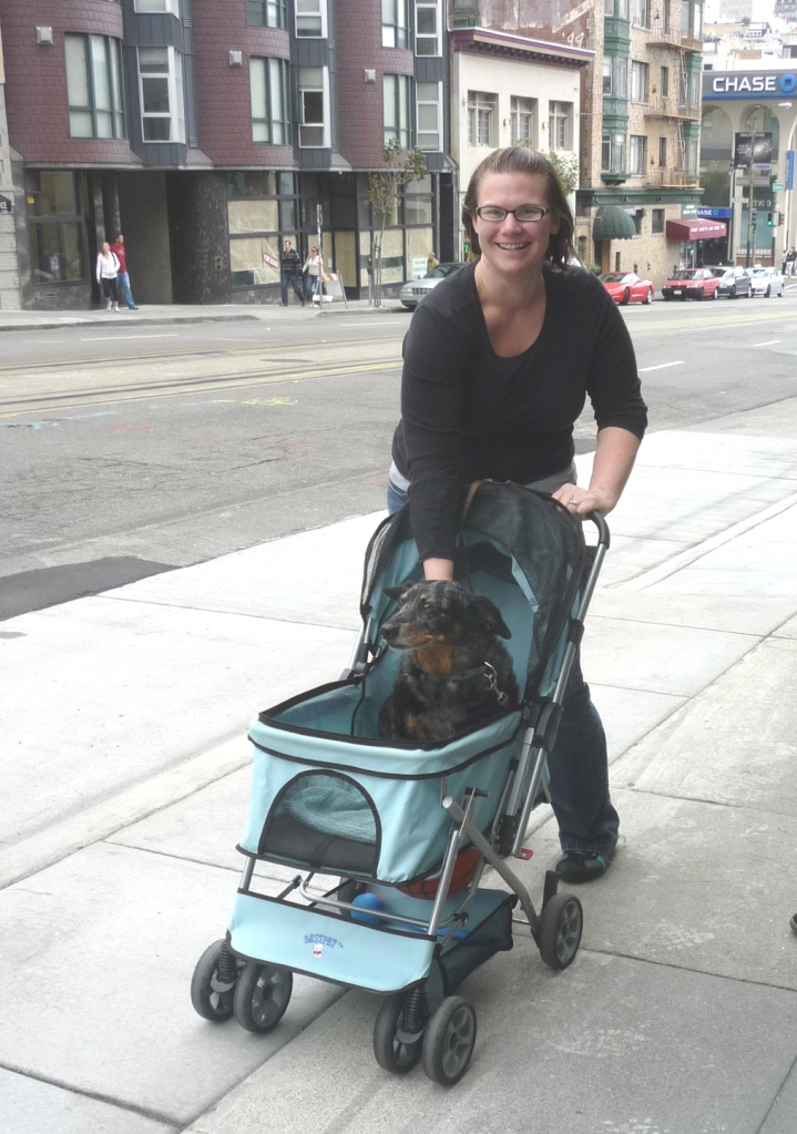 Dog Baby Carriage