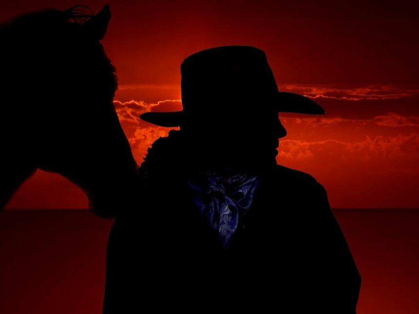 horse-301257_1280