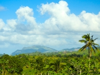 Scene from the highway between Las Terrenas and Samana