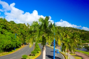 Palm tree-lined hills near Samana