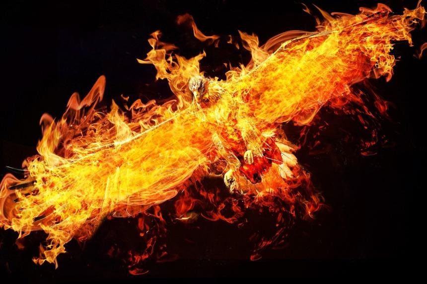 phoenix-2877486_1280