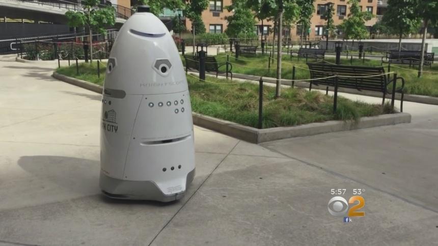 Rosie_Robot